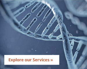 Explore Northeastern Reproductive Medicine's services